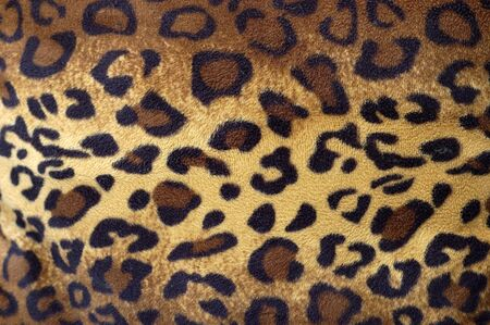 Cheetah skin pattern on fabric