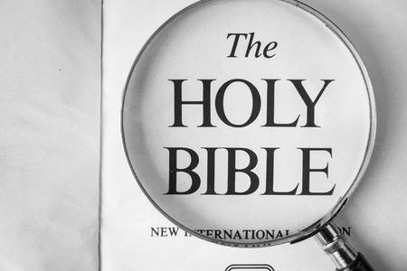 biblia: La lectura de La Nueva Versión Internacional de la Biblia en su casa. Foto de archivo