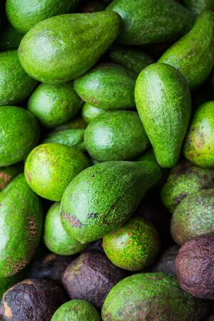 hass: Avocado background. Fresh green avocado on a market stail. Food background.