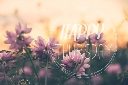 thursday: Happy Thursday word on blurred flower with vintage filter background