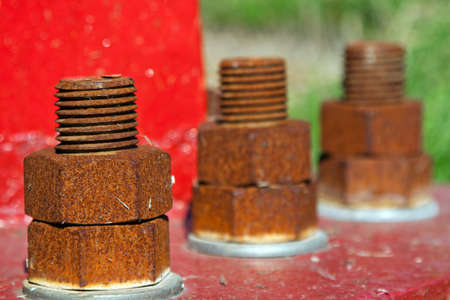 Line of rusty bolts on red background photo