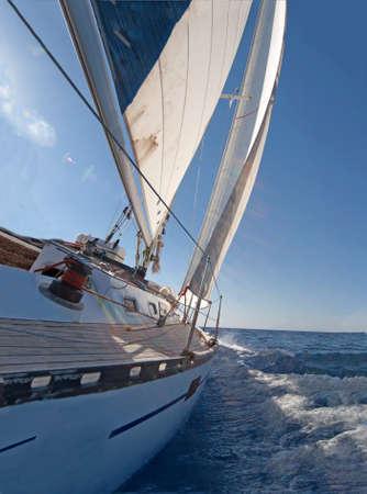 sailing: Sailing boat in the sea