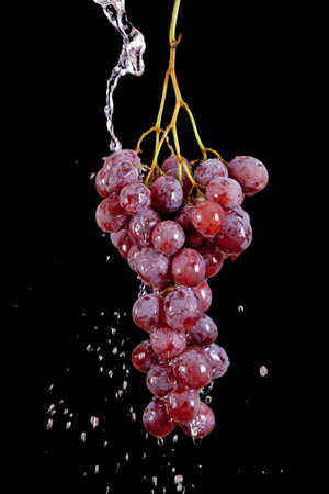 Grape with waterdrops isolated on black background Stock Photo - 7932614