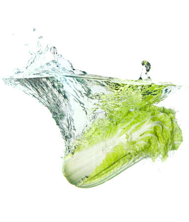 Beijing cabbage in water splash isolated on white  photo