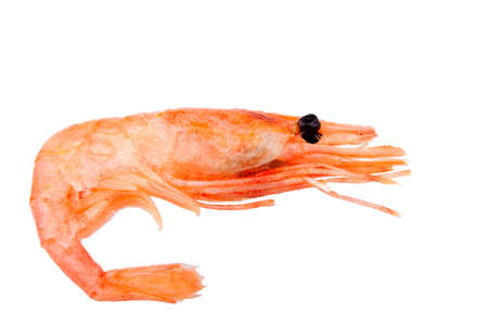 Pink boiled shrimp isolated on white background, macro  photo