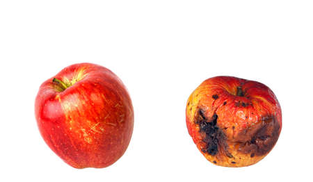Rotten en verse appelen geïsoleerd op witte achtergrond Stockfoto - 9343071