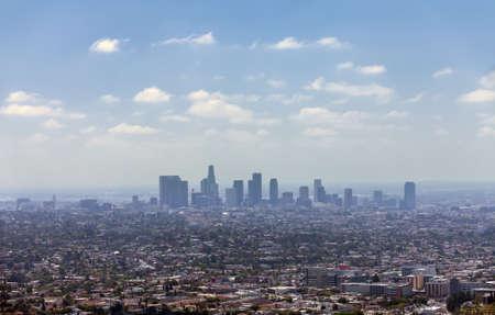 Los Angeles downtown, bird