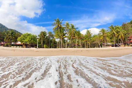 phangan: Empty tropical beach with coconut palms on Koh Phangan island, Thailand  Stock Photo