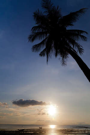 samui: Sunset with palm tree silhouette in Thailand, Koh Samui  Stock Photo