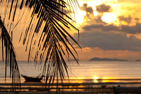 Sunset with palm tree in front and  defocused boat in the sea Stockfoto