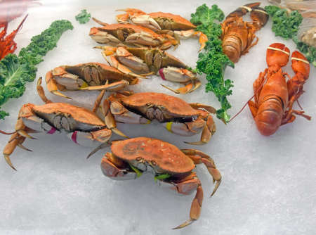 Snow crabs and lobsters on ice in the seafood market  photo