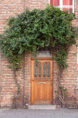 Closed door with vines on the street in Bruges, Belgium photo