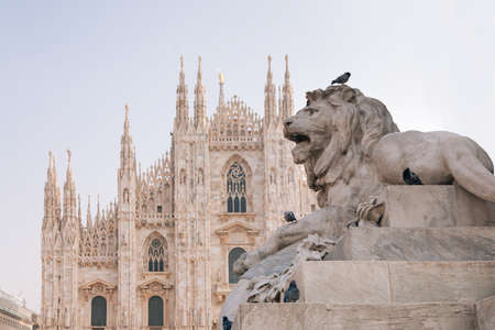 city square: Lion statue in Milano
