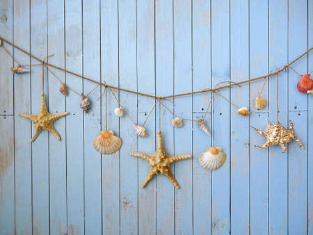 wall decoration: Seashells hanging on the rope, vintage styling and instagram toning