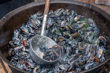 Bowl with mussels in cauldron, sauce and dill