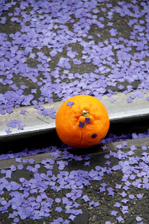 A single orange laying on the open street surrounded by purple paper confetti (during the basel carnival, throwing fresh oranges into the watching crowd is part of the fun).