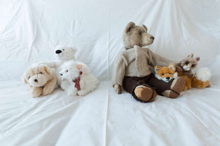 intolerance: A group of cute stuffed animals on a white couch representing racial discrimination, separation and intolerance