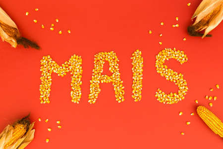 Concept of the word corn in german language formed with dry corn seeds on red background and decorated with golden corn cobs and dry corn seeds