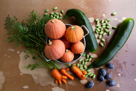 Close-up of freshly harvested organic pumpkins, zucchinis, carrots, pickles and plums on a table with flaking paint. Stock Photo
