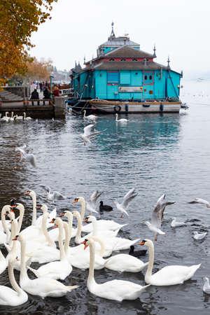 Switzerland, Zurich. The Herzbaracke cabaret-theatre on a watercraft on lake Zurich. Herzbaracke in Swiss German language means either heart barracks or heart attack. Picture taken on 4th of November 2018
