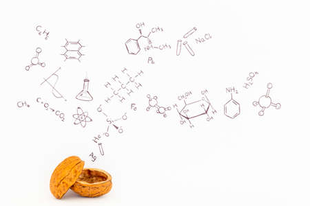 Concept van de uitdrukking chemie in een notendop. Chemische formules en symbolen getekend op wit papier met walnoten Stockfoto