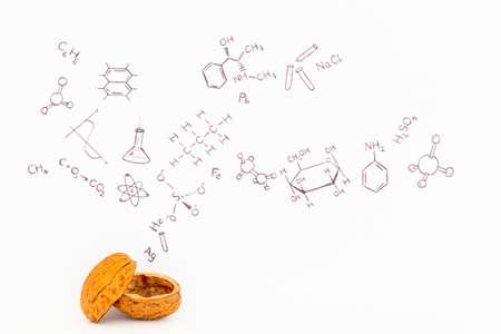 Konzept der Phrasenchemie in aller Kürze. Chemische Formeln und Symbole auf weißem Papier mit Walnüssen gezeichnet Standard-Bild