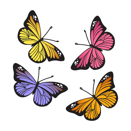 Stylized Monarch Butterflys isolated on white background set. Vector illustration Illustration