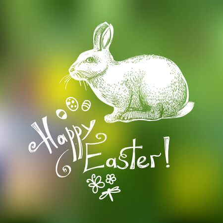Happy Easter hand drawn greeting card template isolated on green blurry background. Doodle Easter sumbols (eggs, bunny, butterfly, flower, dragonfly) and lettering composition. Vector illustration