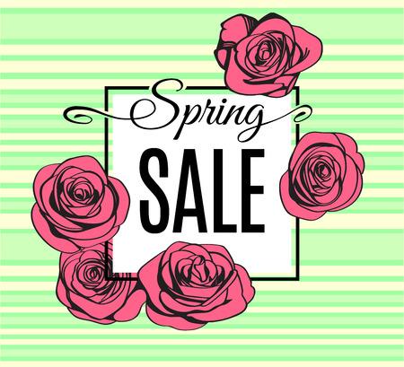 Spring Sale banner template with black frame on light tender stripped green background and with pink outline roses. Shop market poster for your spring design. Vector illustration