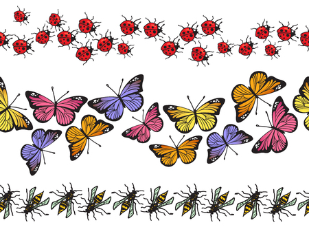 Seamless insect pattern border set isolated on white background. Butterflies, ladybugs and wasps decoration garland collection for your holiday design. Vector illustration