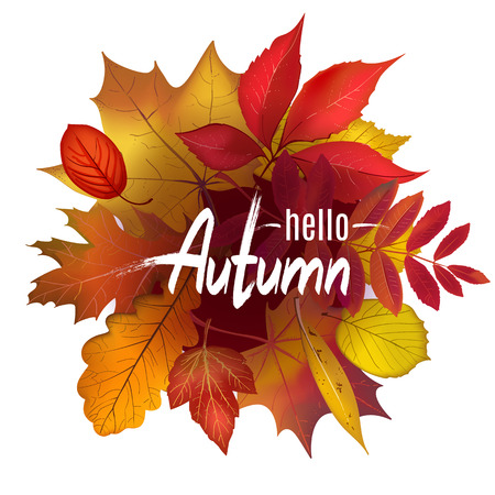 Hello Autumn lettering on colored foliage border composition isolated on white background. Bright falling leaves with place for your text. Vector illustration