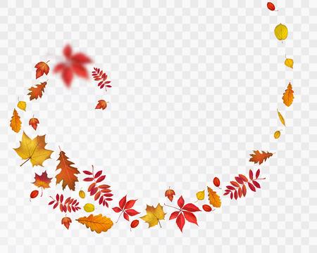 Le foglie di autunno luminose a spirale su sfondo trasparente. Illustrazione di natura vettoriale per la progettazione di caduta Vettoriali