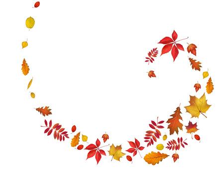 Bright autumn leaves spiral border.