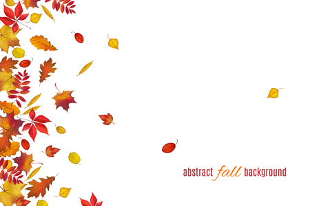 Autumn leaves isolated on white background. Abstract fall background for your greeting cards design or website. Vector illustration