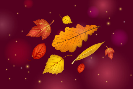 Autumn leaves set isolated on beautiful dark brown background with lights and sparkles. Abstract hello Autumn background for your greeting cards design or website. Vector illustration Çizim