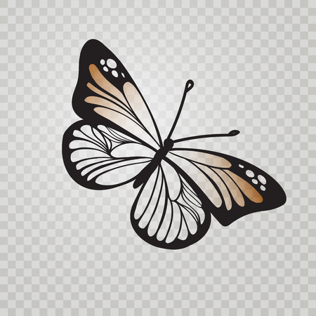 Stylized Monarch Butterfly black line icon isolated on transparent background. Vector illustration for insect