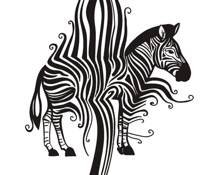 Zebra animal black silhouette modern art abstract concept isolated on white background. Vector creative black and white graphic illustration for tee print design Stok Fotoğraf - 126235981