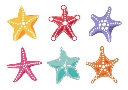 Starfish bright color icon set for your ocean design. Colorful marine objects isolated on white background. Vector sea nature illustration