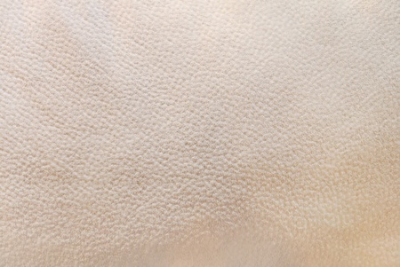 Texture art background of leather.