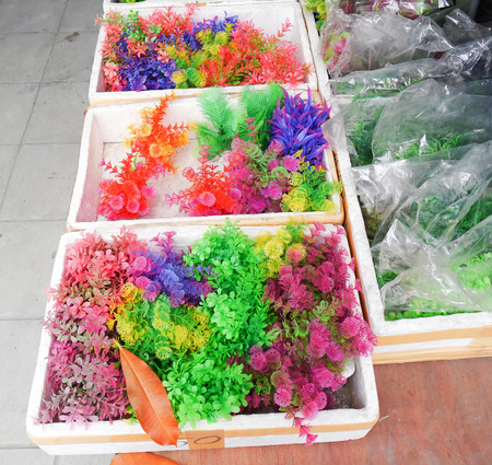 Colorful furniture water plants for fish tank. Stock Photo - 24840459