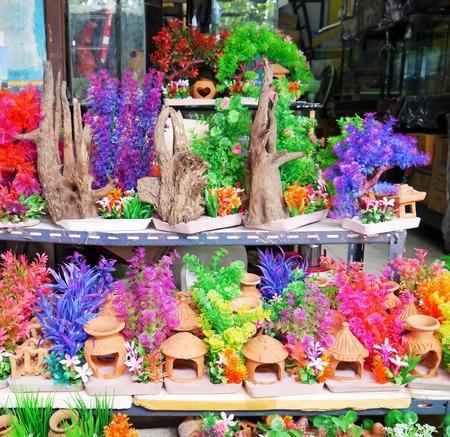 Colorful furniture water plants for fish tank. Stock Photo - 24840461