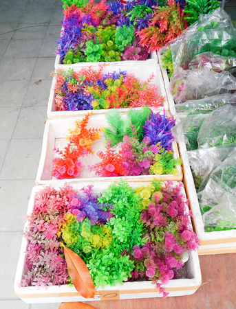Colorful furniture water plants for fish tank. photo