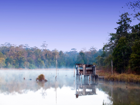 Landscape blue sky in national park thailand on morning. photo