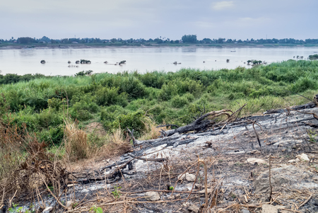 firestorm: After wildfire near river Thailand.