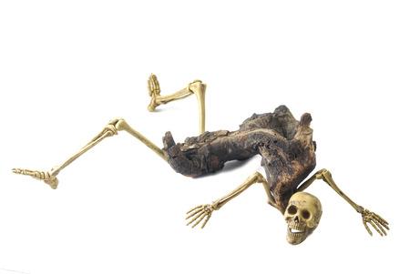 Skeleton ghost resident evil heterogenesis on halloween white background.
