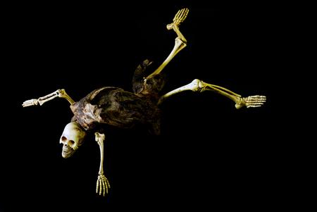 resident: Skeleton ghost resident evil heterogenesis on halloween black background. Stock Photo