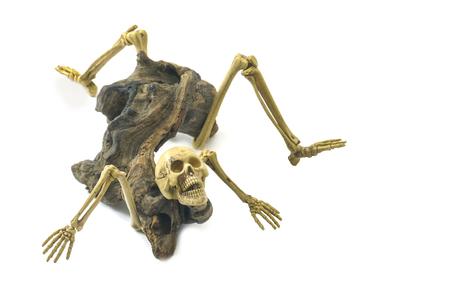 resident: Skeleton ghost resident evil heterogenesis on halloween white background.