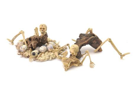 Skeleton ghost resident evil heterogenesis breeding on halloween isolate white background.