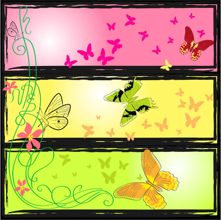 butterfly`s world Vector