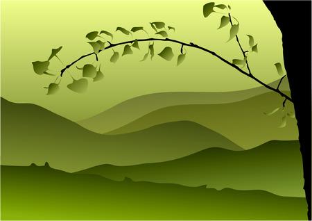 kale: landschap